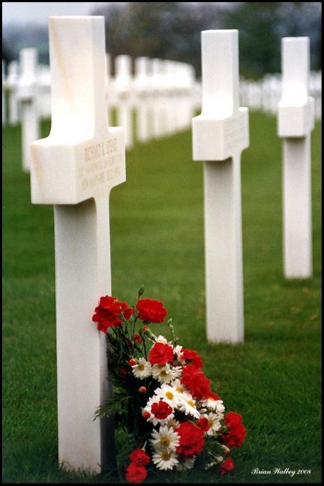 photoblog image We Will Remember