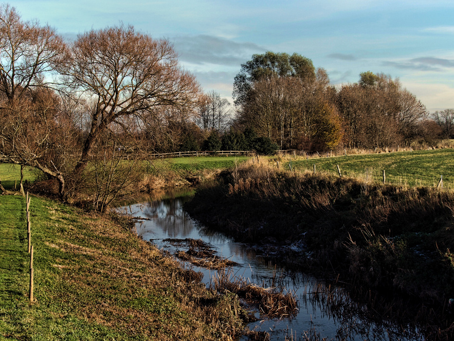 photoblog image A November Morning in Leicestershire 3/5