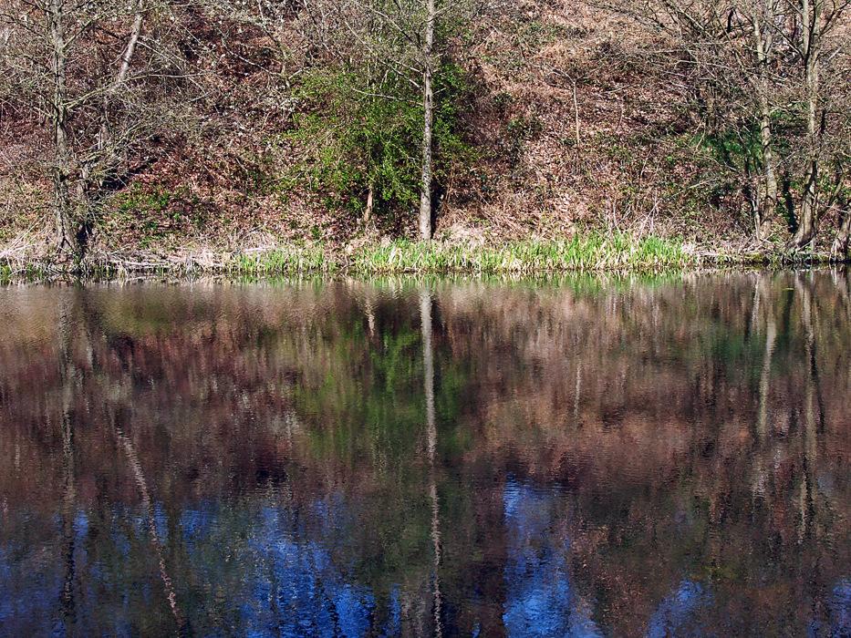 photoblog image Calke Abbey Spring 2/7