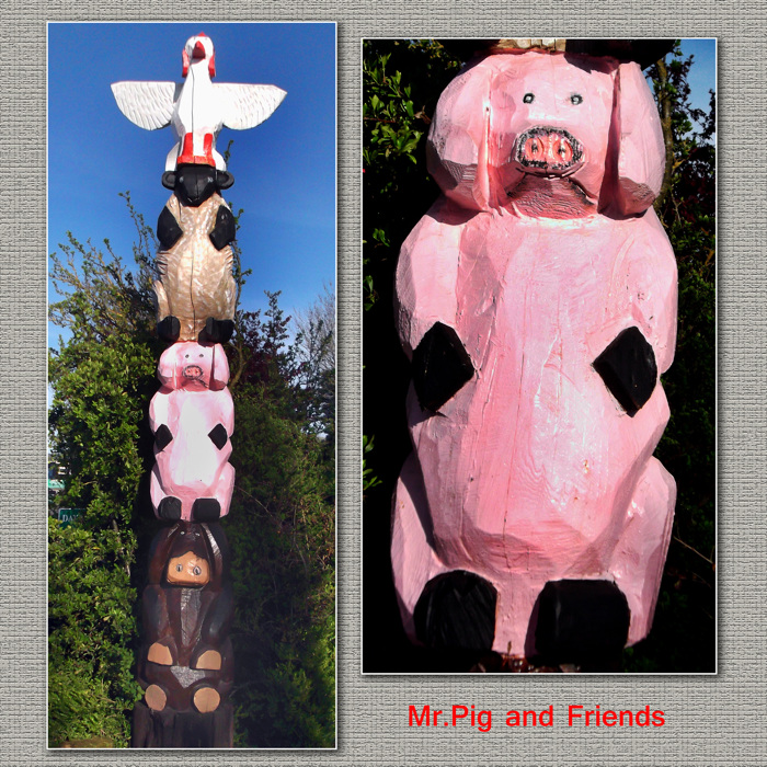 photoblog image Mr.Pig and Friends